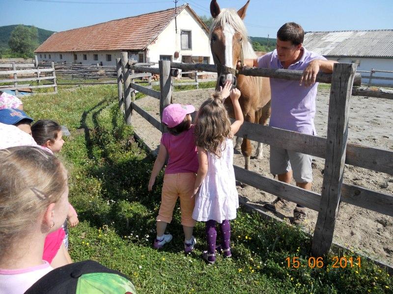Școala de fermieri de la Cornățel: înveți să dai de mâncare la animale