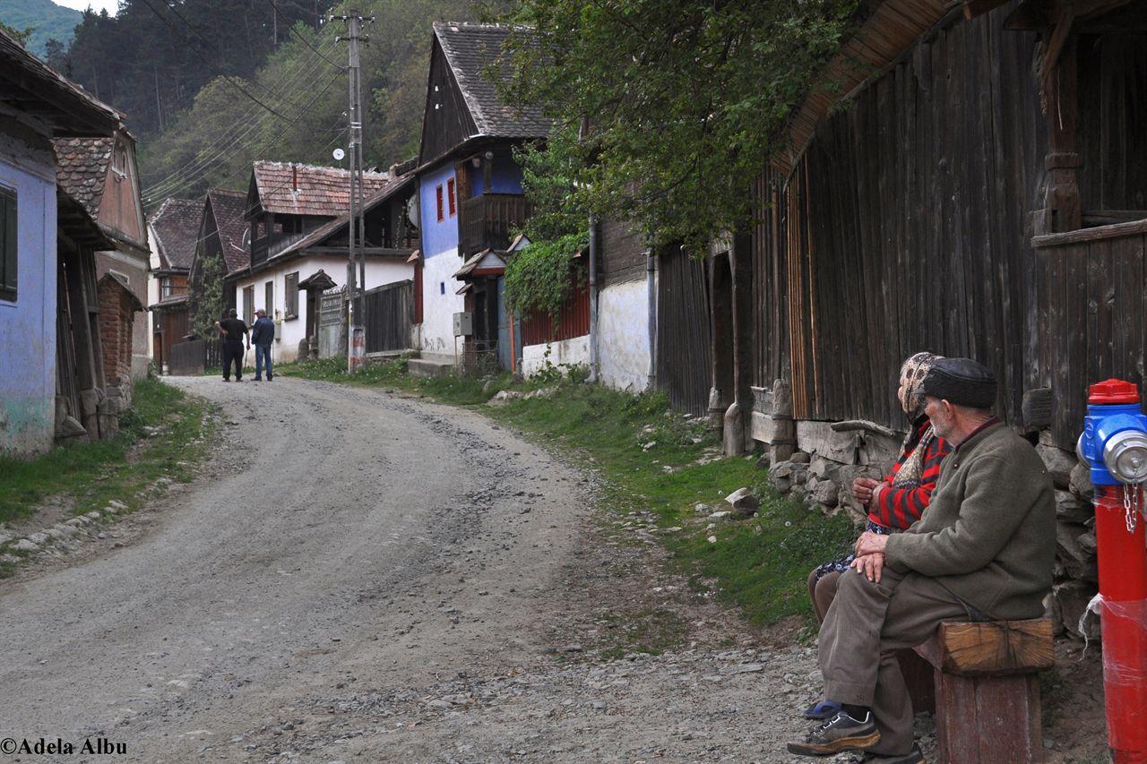 """""""Drumul transhumantei"""" prin Marginimea Sibiului"""