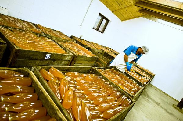 Der Apfelsaft von Malmkrog eine 100% Bio köstlichkeit