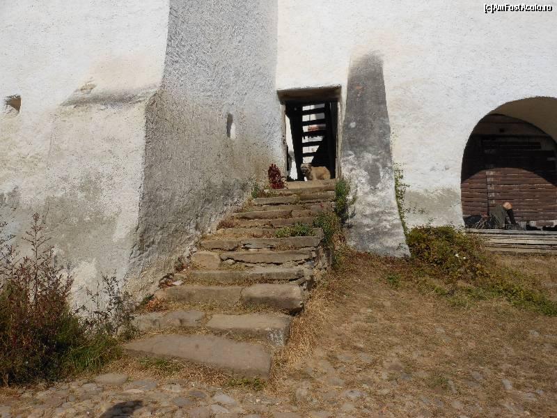 Entdecken Sie das Dorf Weißkirch: eines der schönsten Dörfer Europas