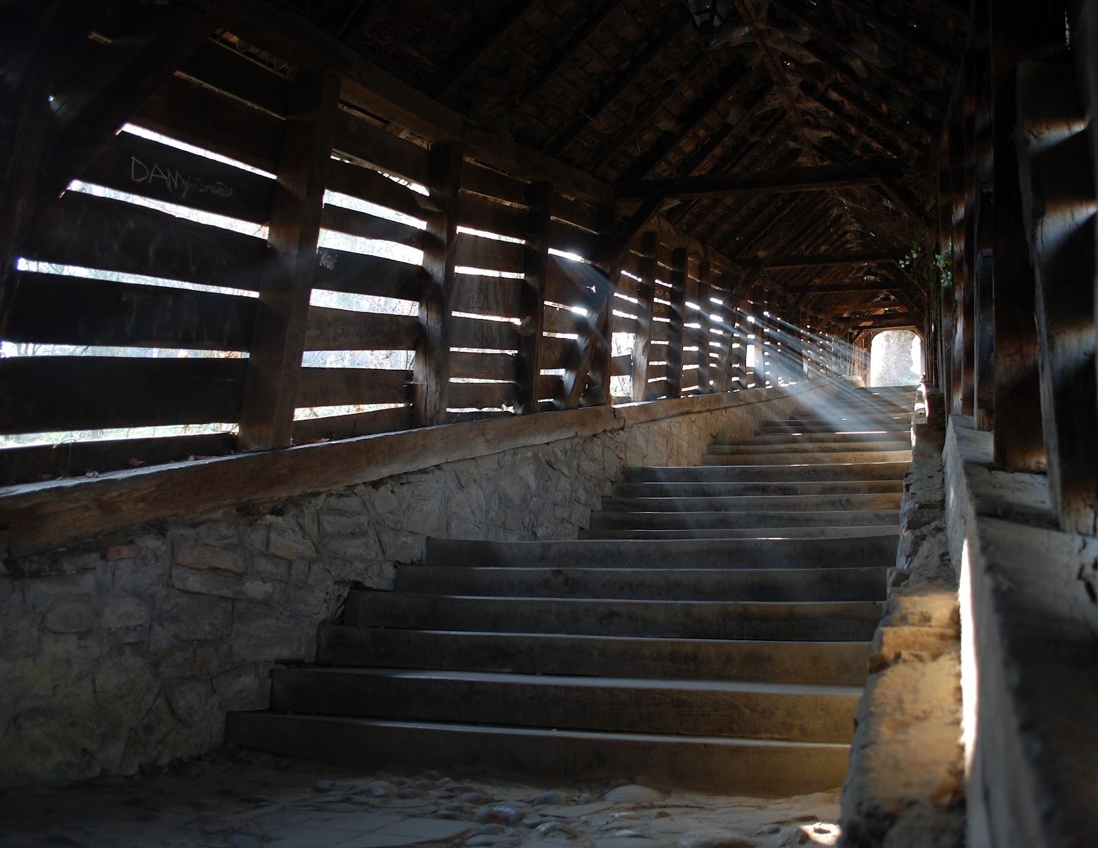 Scara Scolarilor din Sighisoara