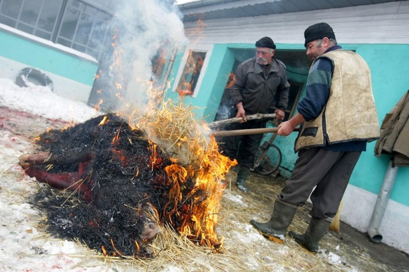 Ignatul, o traditie din Transilvania veche de sute de ani