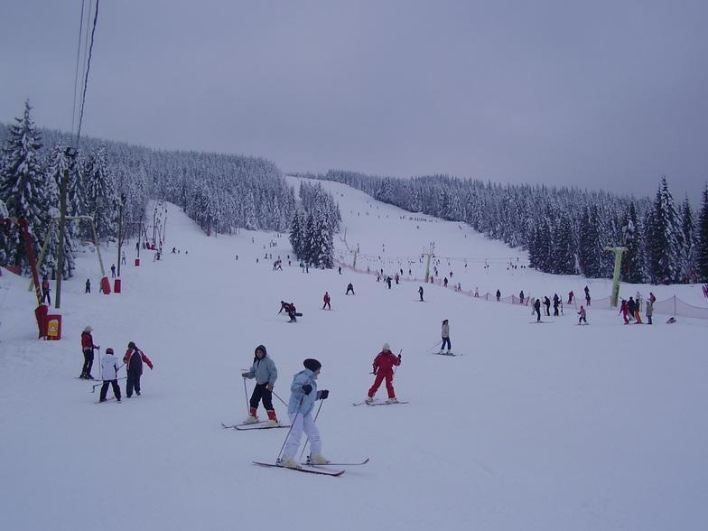 Statiunea montana Arieseni