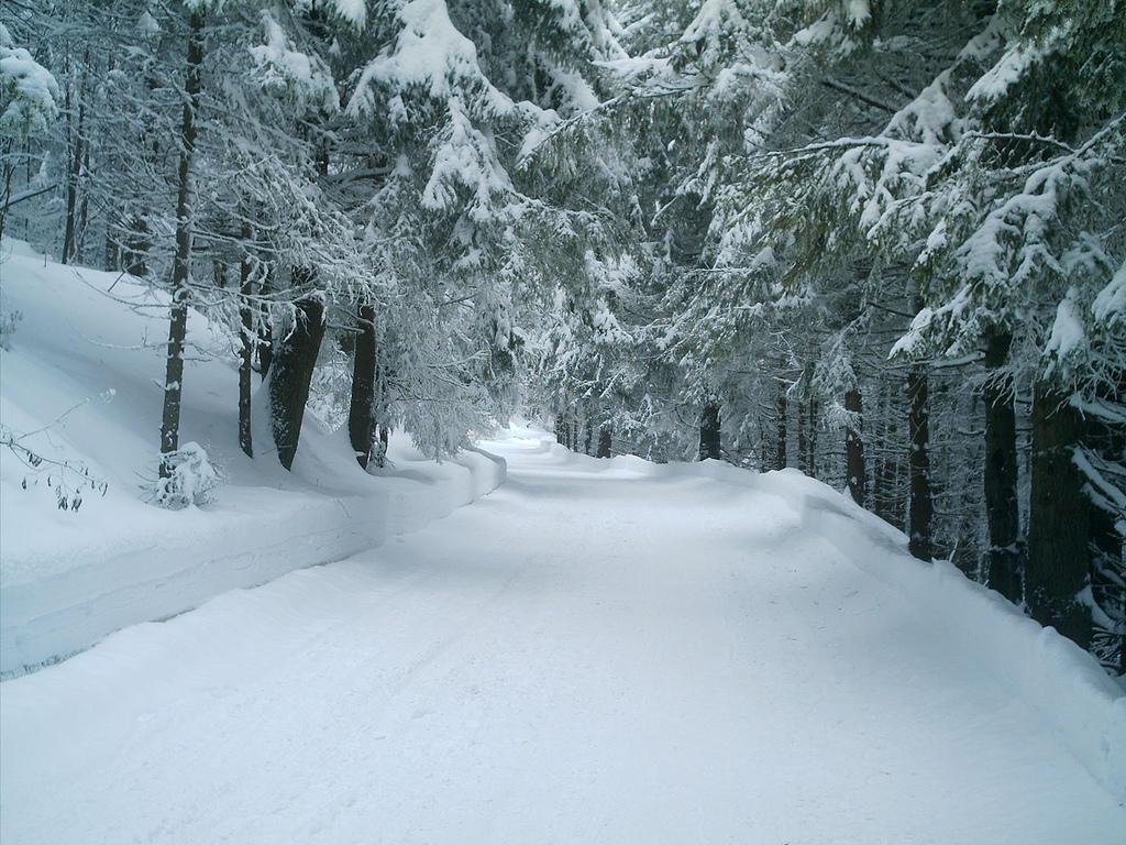 Statiunea Paltinis, cea mai veche statiune montana din Romania
