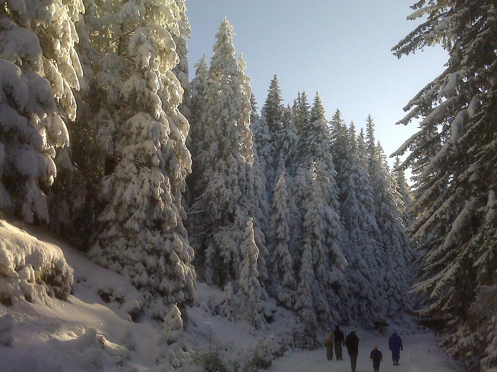 Bergstation Hohe Rinne, die älteste in Rumänien