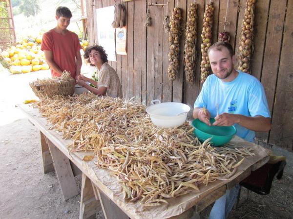 Der Bio-Bauernhof von Meschen: Tradition, natürliche Produkte und wohldosierte Entschleunigung