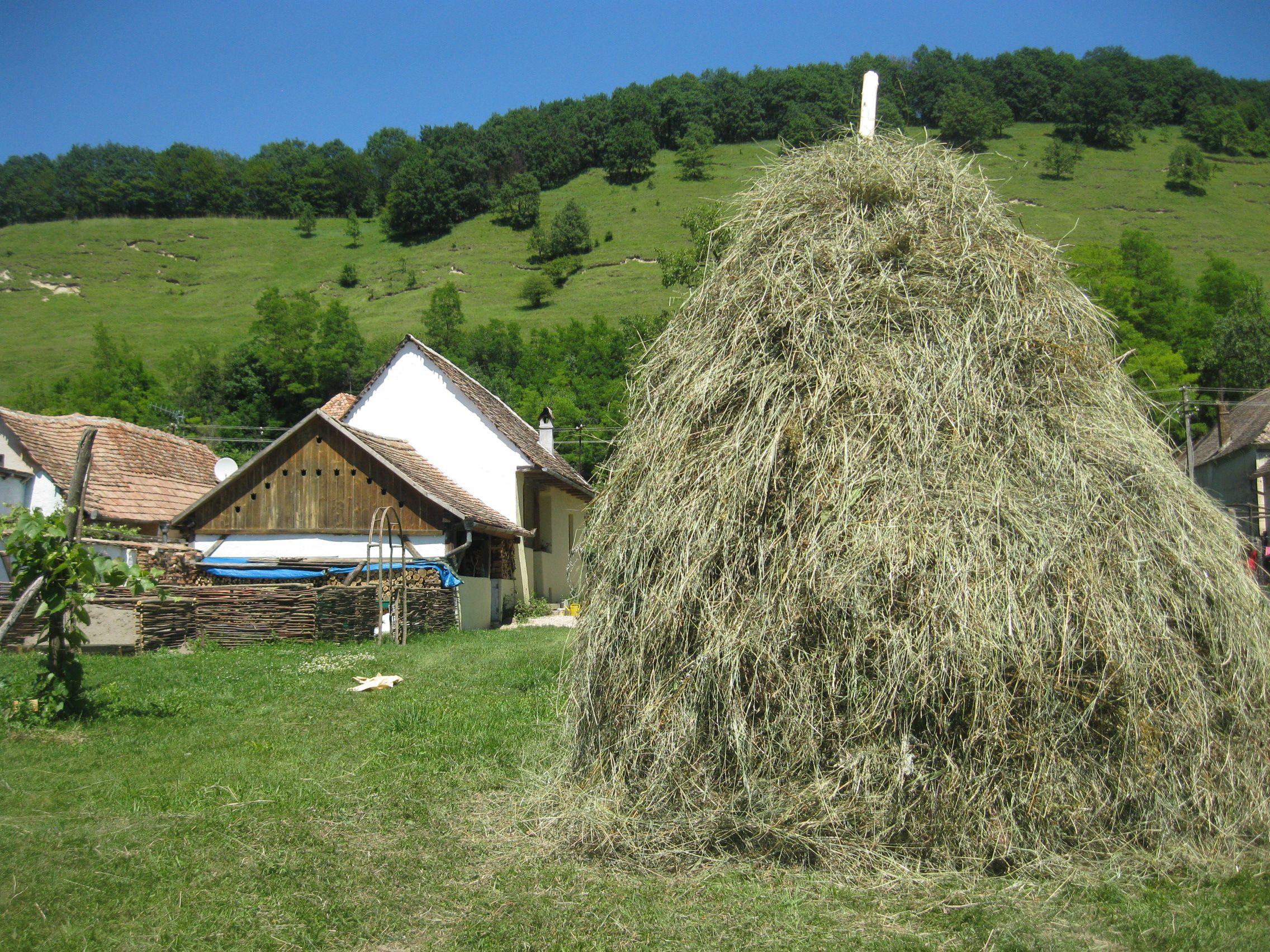 Casa in Natura – Ländliche Ferienhäuser mit Stil in Transsilvanien/Rumänien