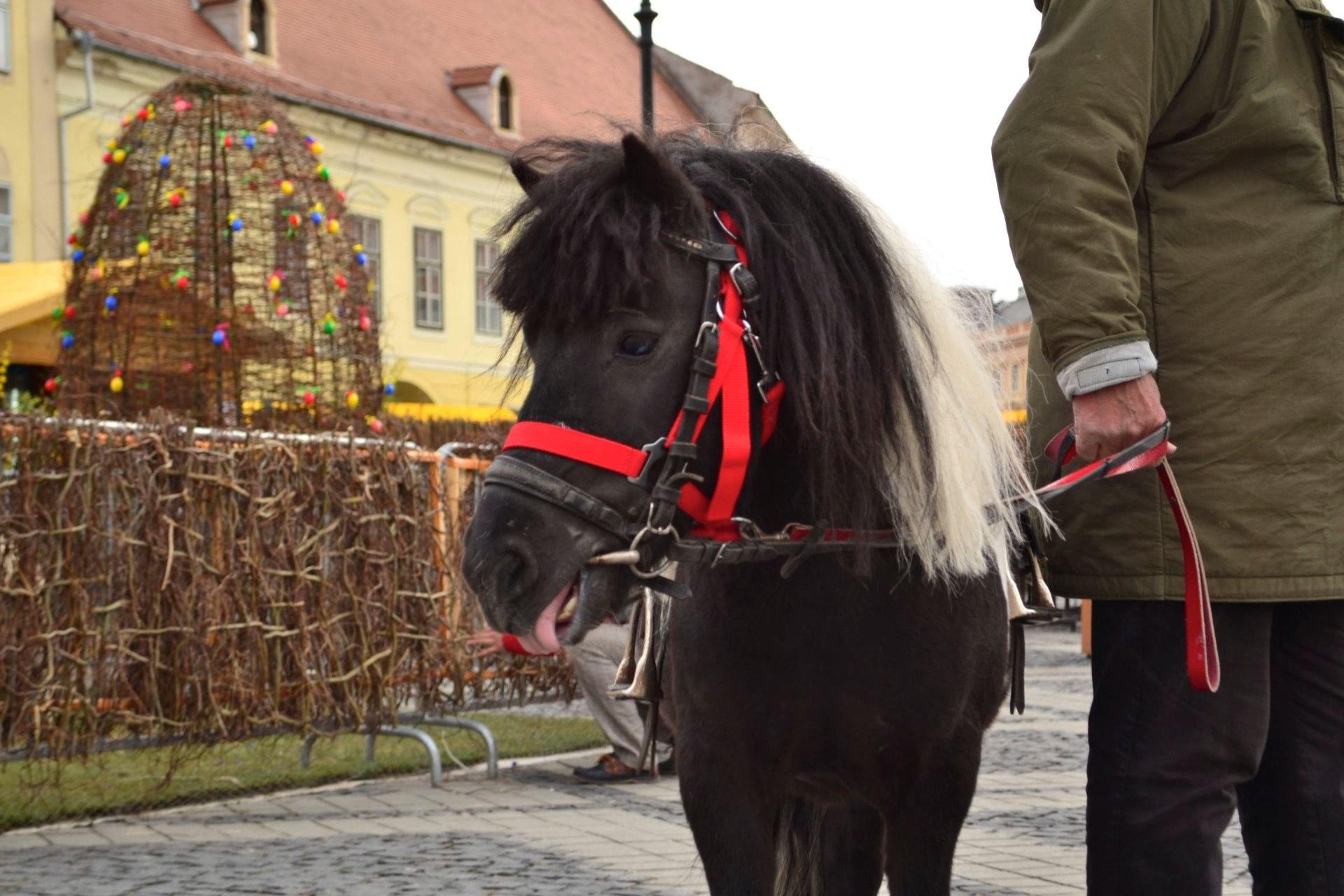 Targul de Pasti de la Sibiu, intre 26 aprilie si 7 mai