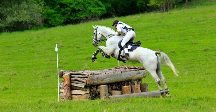 Transylvania Horse Show