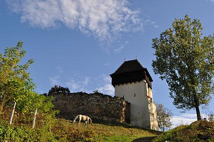 Satul Țapu